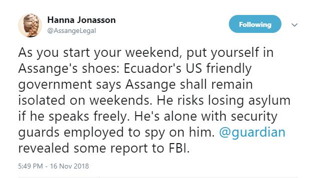 assange legal